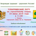 Городошники Липецка и Рязани проведут товарищеский матч и укрепят связи ТОС