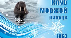 Зимнее плавание — национальный вид спорта России. Почему в Липецке он уничтожается?
